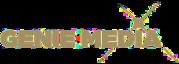 Genie Media - strategic marketing consulting service Australia